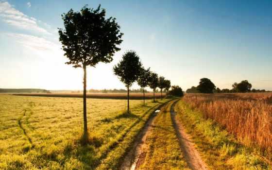 природа, супер, путь, ферма, pics, images, ver,