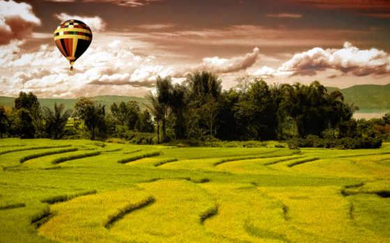 поле, landscape, зелёный