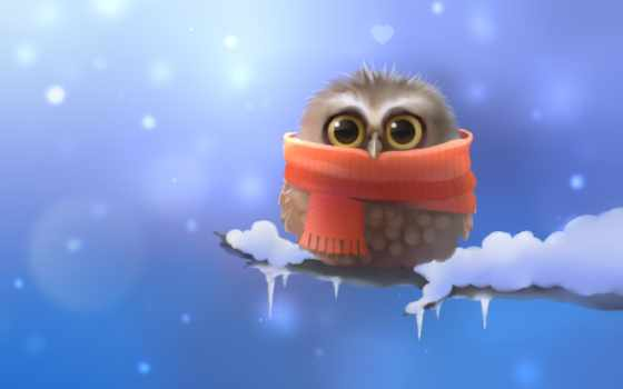 совёнок, branch, птица, сова, снег, шарф, apofiss, art, zhivotnye,