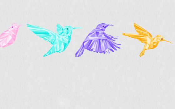 минимализм, колибри, графика, полет, птица, оригинальные, май, рамочка, color,