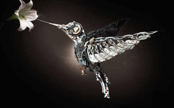 тег, heuer, колибри, watch, год, pinterest, механическая, colibri, часы,