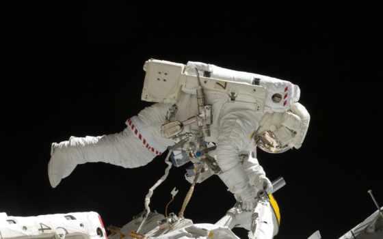 espace, astronaute, dans, sortie, une, мкс, новости, mks, cosmos, индевор,