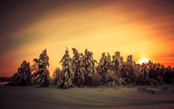 winter, закат, природа, nieve, вечер, atardecer, картины, collasuyo, лес, модульные, рассветы,