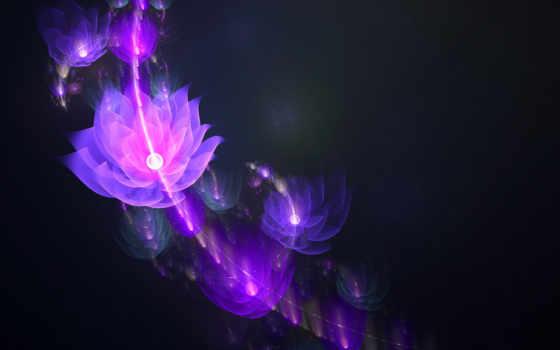 flor, cosmo, floral, fondo, imagenes, brillos, iii