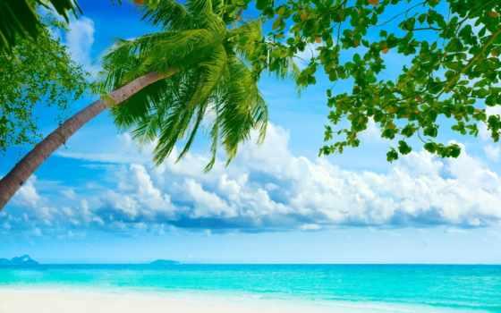 пляж, desktop, free