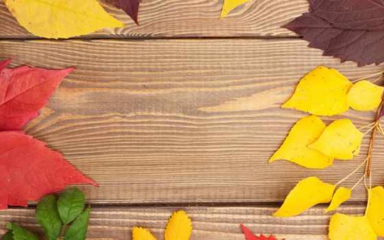 tapety, листва, листья, осень, осенние, текстура, wood, pulpit, deski, бесплатные,