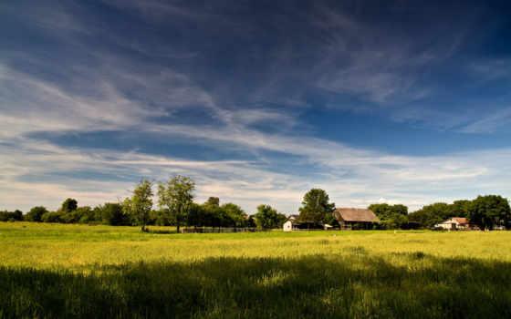 дерево, небо, house, природа, landscape, деревня