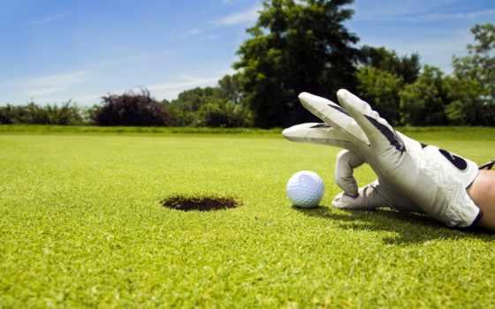 газон, спорт, мяч, golf, game,