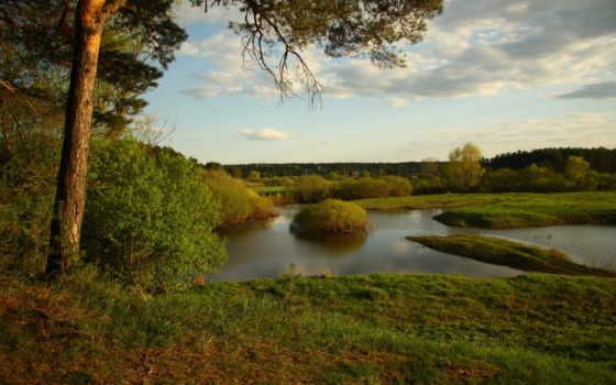 природа, отдых, река, landscape, прогулка, небо, пейзажи -, pine, лес, озеро,