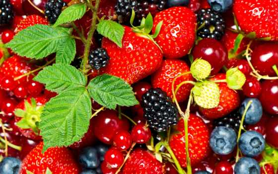 fondos, ягоды, pantalla, фрукты, производить, фотообои, fresas, стену, купить, escritorio,