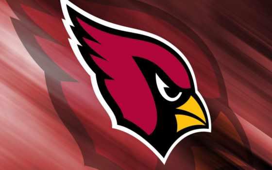 cardinals, arizona, logo, logos, история,