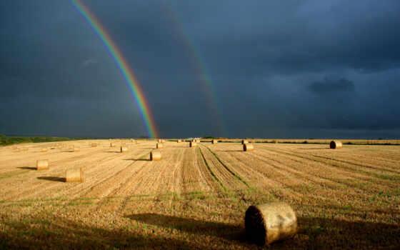 поле, сено, сноп, радуга, povis, облако, stormy, который, природа