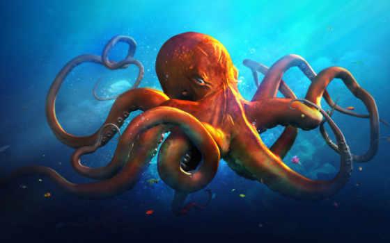 осьминог, смотреть, video