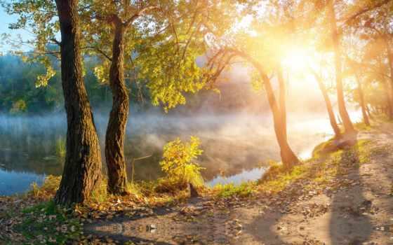 landscape, солнечные, rays, солнечный, свет, листва, красивая, осенние, природа, пейзажи -, высокого,