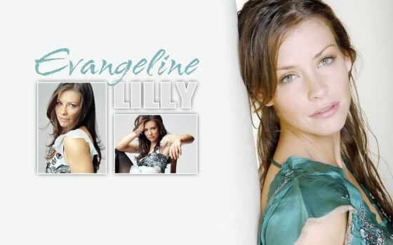 lilly, evangeline