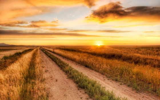 поле, закат, дорога