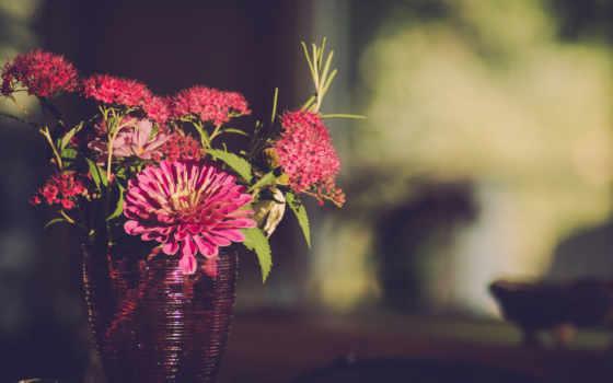 ваза, герберы, букет, cvety, картинка, розы, еда, desktop,