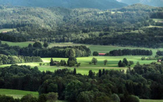 зелёный, дерево, поля, id, desktop, природа, остров, totally,