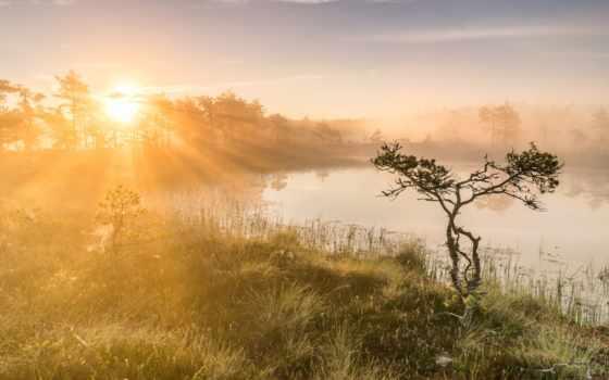 день, hour, утро, туман, china, назад, доска, озеро, mac