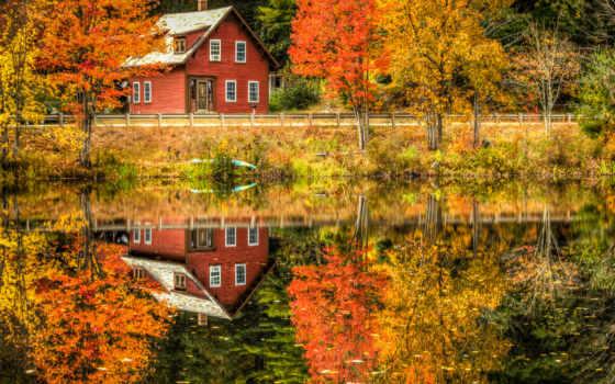 осень, природа, деревя