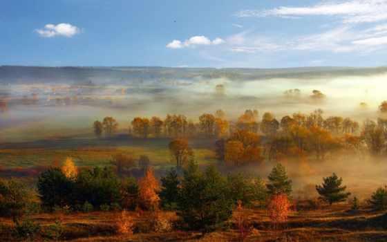 природа, туман, trees, пейзажи -, осень, категории,