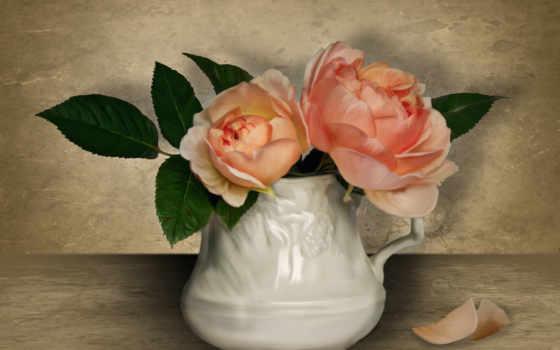 розы Фон № 27800 разрешение 1920x1200