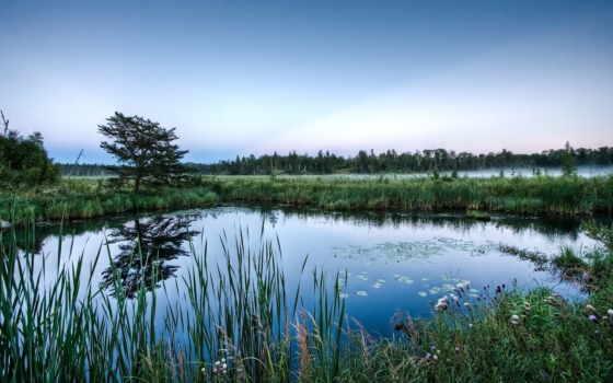 озеро, озера, туман, голубое, лес, reki, природы, красивые, природа,