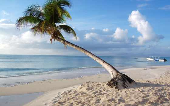 iphone, пляж, maldives, tropics,