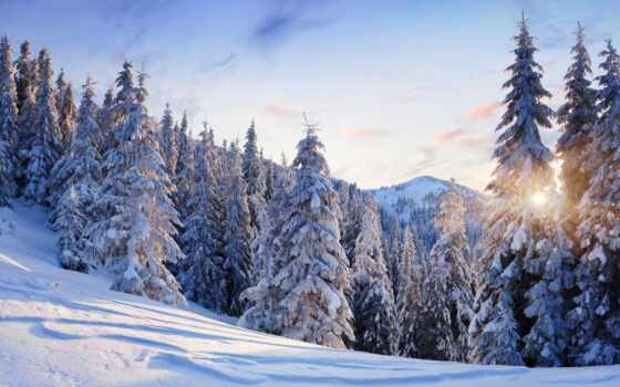 winter, снег, дерево, елка, гора, небо, sun, есть