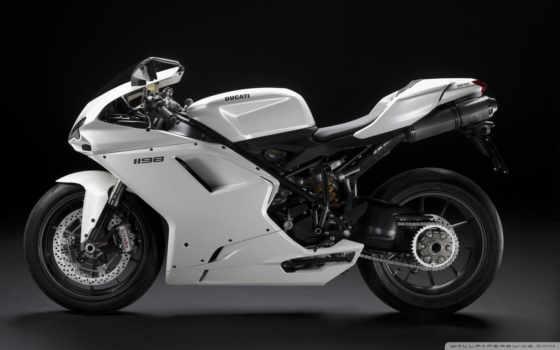 superbike, moto, motorrad, supersport, девушек,