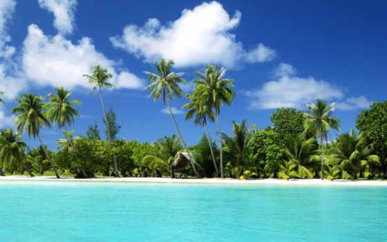 пляж, море, песок, пальмы, tropics, остров, sun, tropical, summer, ocean,
