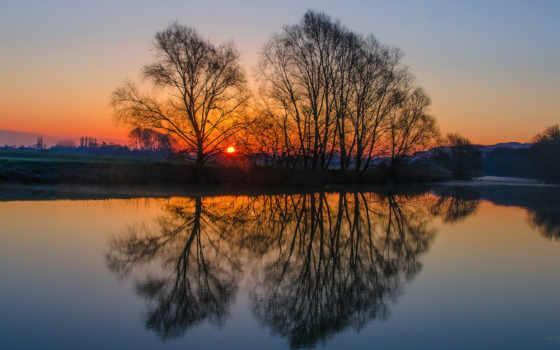 отражение, воде, trees, деревья, закат, солнце