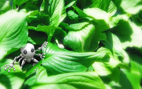 robot, зелень