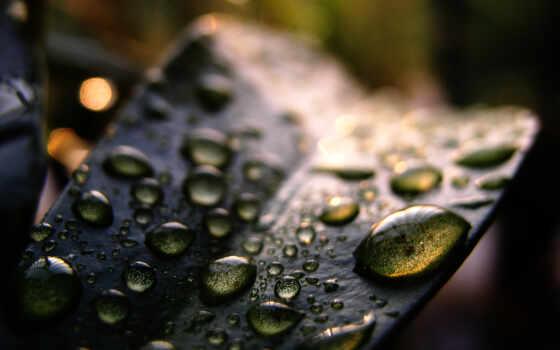photography, текстура, examples