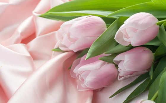 тюльпаны, flowers, шелк