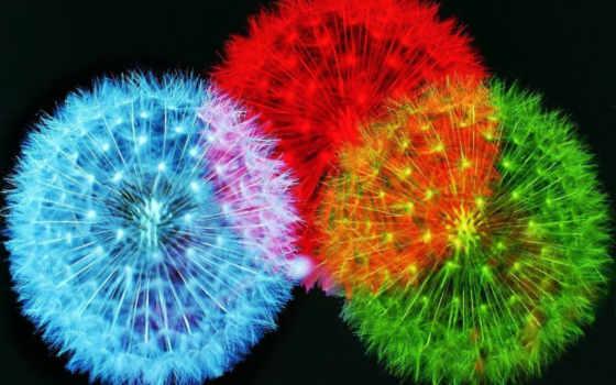 аву, яркой, жизни, яркие, радужные, fireworks, прикольные, you, positive, изображение, красивые,