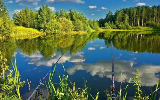 рыбалка, природа, лес, березы, отдых, удочки, река, trees, озеро, отражение, пруд,