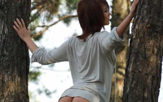 утро, лесу, сосновом, max, payne, девушка, virgin, утром, kitchen, дек, белье,