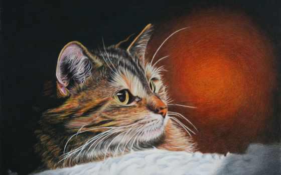 кот, art, рисованные, живопись, images, pictures, фотографий, denigmo, олени,