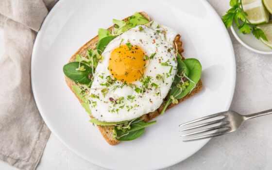 завтрак, yaichnica, toast, яйцо