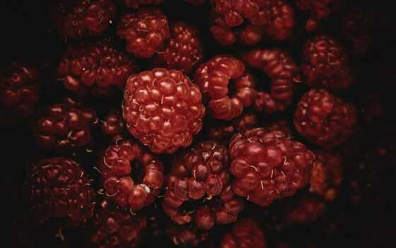 ягода, черная, два