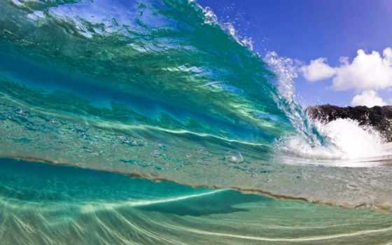 hawaii, high, oceans, коллекция, фон, качество, hawaiian, sutomor, пляж, sophie