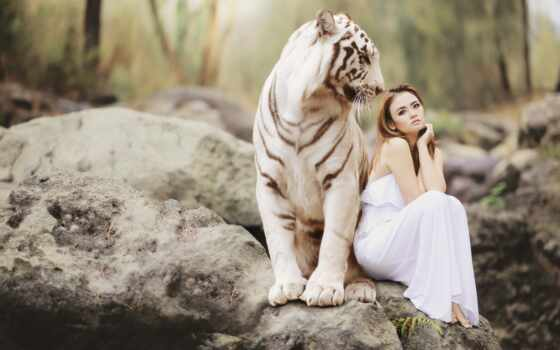 девушка, женщина, white, тигр, love, insurance, тигрица, blonde