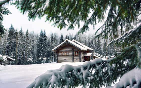 лесу, lodge, зимнем, фотообои, интерьере, house, winter, стену, чёрно, wooden,
