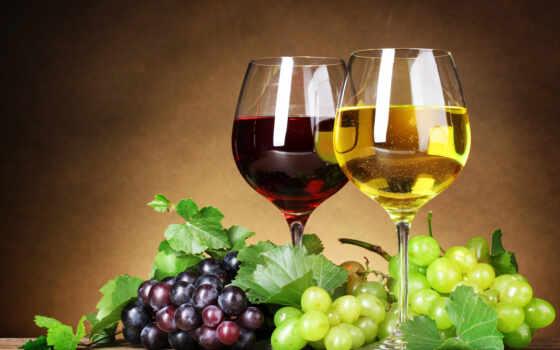 вино, коньяк, напиток, вина, ob, home, zakarpatskii, have, производственный