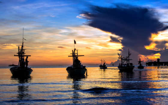 февр, корабли, коллекция