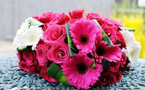 roses, розовый, flowers, розы, flores, цветы, white, букет, природа,