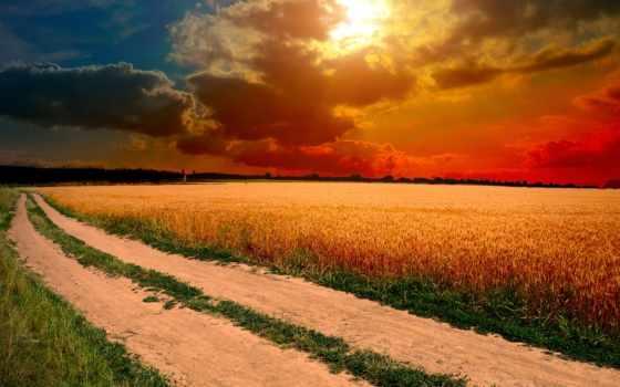 поле, дорога, грунтовая, поля, дороги, пшеничного, проходящая, along, закат, небо, ах, fone, sun,