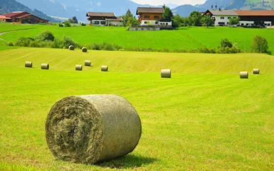 поле, австрия, landscape, сено, house, природа, тег, ultra,
