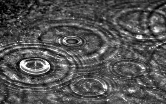 дождь, круги